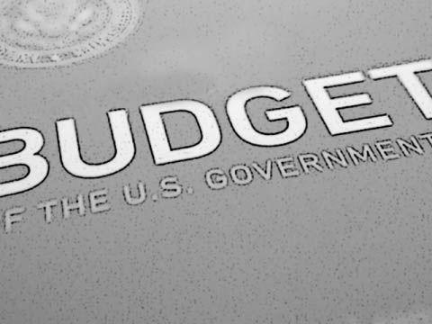 The U.S. Government's Budget Process
